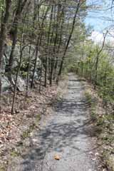 Mt Pisgah - Hacklebernie Tunnel, Mauch Chunk Switchback