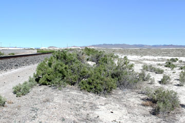 Umbria Junction, Nevada